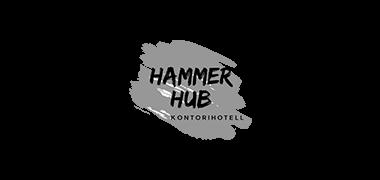 HammerHub